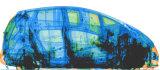 Рентгеновский снимок автомобиля передвижного рентгеновского аппарата Управлять-Через систему контроля корабля