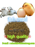 Fischmehl mit proteinreichem