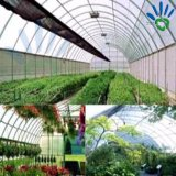Сырья ткани PP Nonwoven для садоводства, земледелия, конструкции сада, растут мешки, вертикальные плантаторы и строительная промышленность