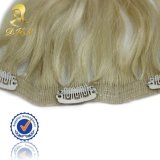 Hair Extension에 있는 공장 Wholesale Synthetic Clip