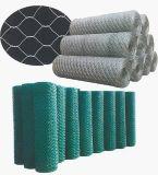 """1/2 """", 1 """" Galvanized&PVC покрыло плетение провода цыплятины/плетение мелкоячеистой сетки"""