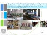 Hangzhou Sanitario de cabina de baño de vapor Ducha