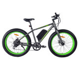 Fettes Fahrrad-elektrisches fettes elektrisches Fahrrad