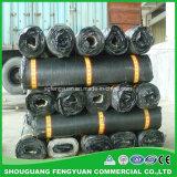 Membrana impermeabile della parete della costruzione dell'asfalto modificata Sbs del Underlayment
