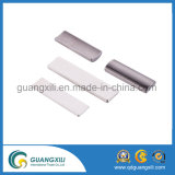 Bright Silver Shape N45 NdFeB Magnet Used for Permanent Magnetic Ring