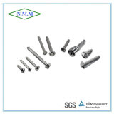 La vite/Bolt/Self-Tapping Screw/Assemblies avvita il fermo