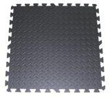 De met elkaar verbindende Tegels van het Alfabet van EVA, de Mat van de Vloer van EVA