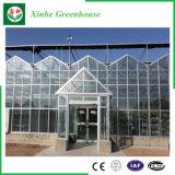 Jardin/ferme/serre chaude en verre Multi-Envergure de tunnel pour Rose/pomme de terre