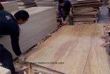 Núcleo de Combi, classe natural da madeira compensada C/C da face do vidoeiro