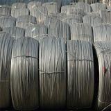 Fil d'acier galvanisé par As3607 normal de fil d'acier pour la ligne et le treillis métallique obligatoires