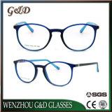 Het nieuwe Optische Frame T6004 van het Oogglas van Eyewear van de Glazen van de Mannequin Tr90