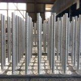 Base registrabile del Jack di vite dell'impalcatura d'acciaio di alta qualità