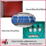 Bleu/vert/hormone stéroïde humaine rouge/noire d'évolution du dessus 191AA Gh