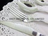 Vaisselle en gros réglée d'acier inoxydable de couverts de Faltware de qualité