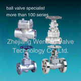 Stainless Steel F304 F316 Forged Steel Gate Globe Check Valves