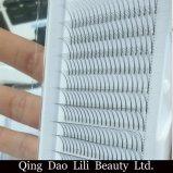 Lili 아름다움 합성 머리 0.05mm-0.25mm C 컬 6D 러시아 양은 6D Premade 팬에게 한 매듭 자유로운 다발 채찍질 순수한 손을 채찍질한다
