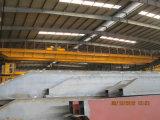 電気起重機が付いているLhの研修会の使用の倍のガードの天井クレーン