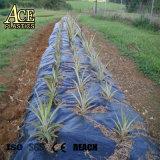 Fabbrica stuoia di plastica di controllo della barriera tessuta pp da 80/90/95/100/105 di GSM Weed per agricolo/giardino/il prato inglese