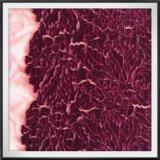 Laser-Stickerei-Nylonineinander greifen-Samt-Stickerei