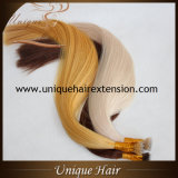 Концы бразильских выдвижений волос Nano