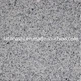 Mattonelle di pavimento grige del granito G684/G603 per la pavimentazione, pavimento, cucina