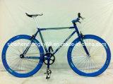 [700ك] يتسابق درّاجة لأنّ عمليّة بيع حارّ ([رك-001])