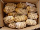 Neues Getreide-frische Kartoffel (200g und up), für den Export