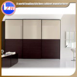 Portão deslizante de madeira europeu moderno Porta armário para quarto (com vidro)