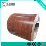 Le premier de la qualité Galvalume bobine d'acier prépeint