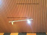 Panneaux de plafond en plastique de PVC de salle de bains pour les murs et le plafond