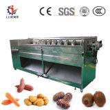 Nettoyage de pommes de terre de racine de lotus et desquamation de la machine