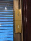 Entre Estores de vidro para portas de vidro duplo Windows