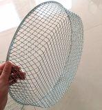 記憶のバスケットか細かい網のバスケットはまたは金属のバスケットを消毒する
