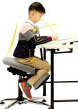 가정 가구 (KC-1319)를 위한 조정가능한 고도 아이 연구 결과 의자