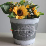 Nouveau design La feuille de fer Pot de fleurs