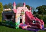 Nuovo castello gonfiabile, trasparenza gonfiabile per i bambini (SL-115)