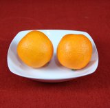 China Utensílios Definir Irregulares, conjunto de jantar em cerâmica