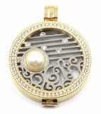 Fabbrica Direct 316L Stainless Steel Locket Pendant con Interchangeable Coin Plate