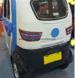 Neues elektrisches Auto mit starker Energie 1000W