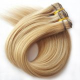Brasil Hair Extension Clip en la extensión de Cabello Humano (AV-CH100-20-27/613)