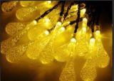 Солнечной лужайке лампы освещения в саду