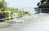 Литой алюминий цвета новой конструкции верхнего качества белый обедая комплект использующ в напольном саде (YT915)