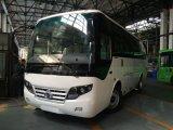 Turismo entre los Autobuses Urbanos / Transporte en mini bus de pasajeros turísticos