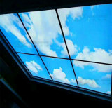 Global Shining Plexgass numériques 3D IMPRIMANTE UV