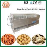 De Wasmachine van de Aardappel van de Wortel van de gember