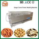 Lavadora de la patata de la zanahoria del jengibre de la maquinaria del proceso vegetal