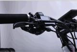 Bicicletta della signora Fat Tire Lithium Electric del Ce 36V
