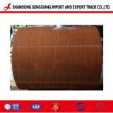Ral Farbe PPGI/Color beschichtete Stahlring von Shandong