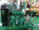 This ISO Approved 20-100 kw Biogas Generator/Methane Gas Generator