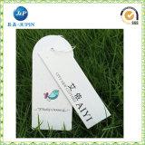 Нестандартная конструкция оптовых продаж рециркулировала бумажный Hang маркирует (JP-HT043)